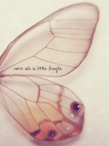 we are all fragile